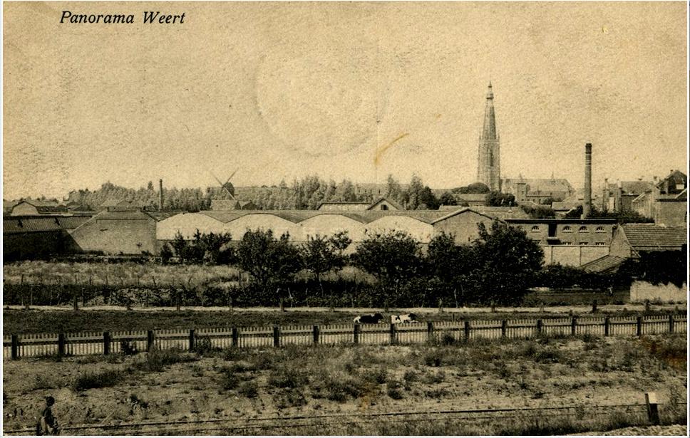 Een tot voor kort onbekende panorama van Weert met rechts de Binnenmolen.