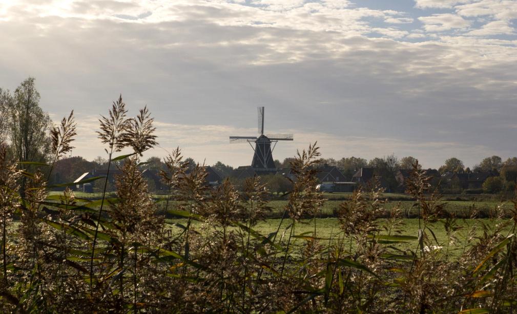 Wind- en watermolens zijn belangrijke landmarks binnen Kempen~Broek