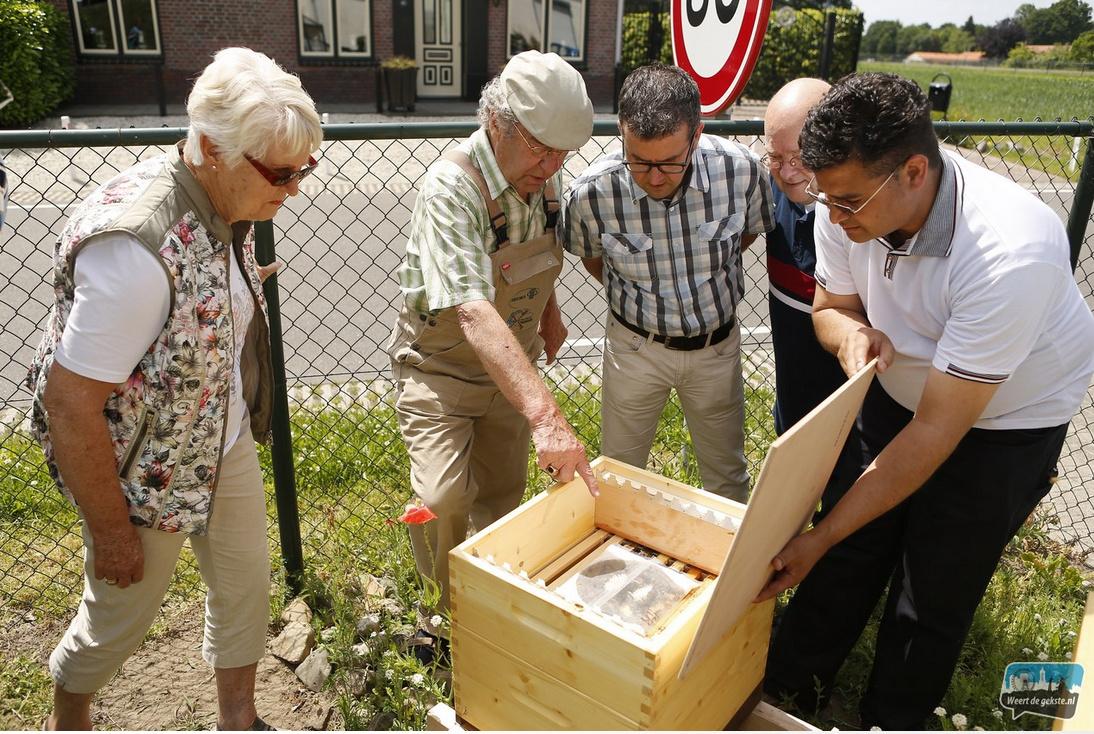 Vakkundige uitleg over de bijenkasten en de bijen.