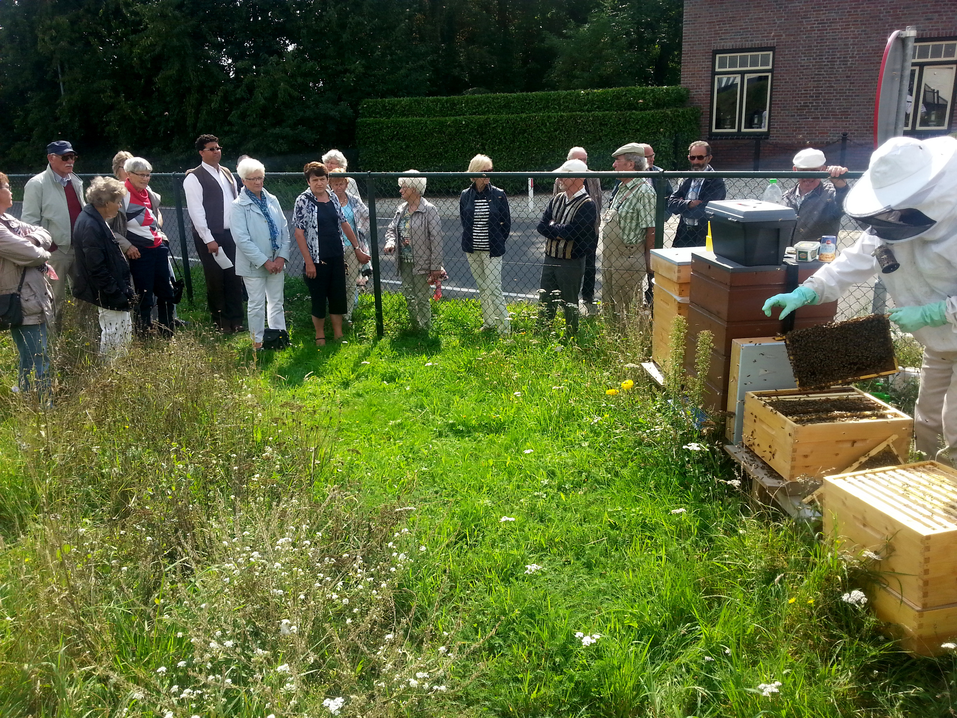 De bijenvolken werden vanmiddag vertroeteld