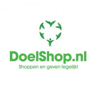 DS_logo_kleur-slogan