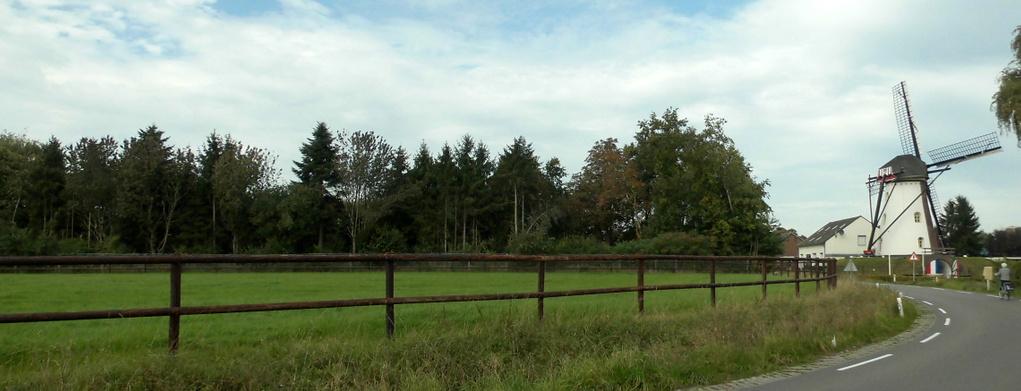 Een verwilderde boomgaard levert biotoopproblemen op