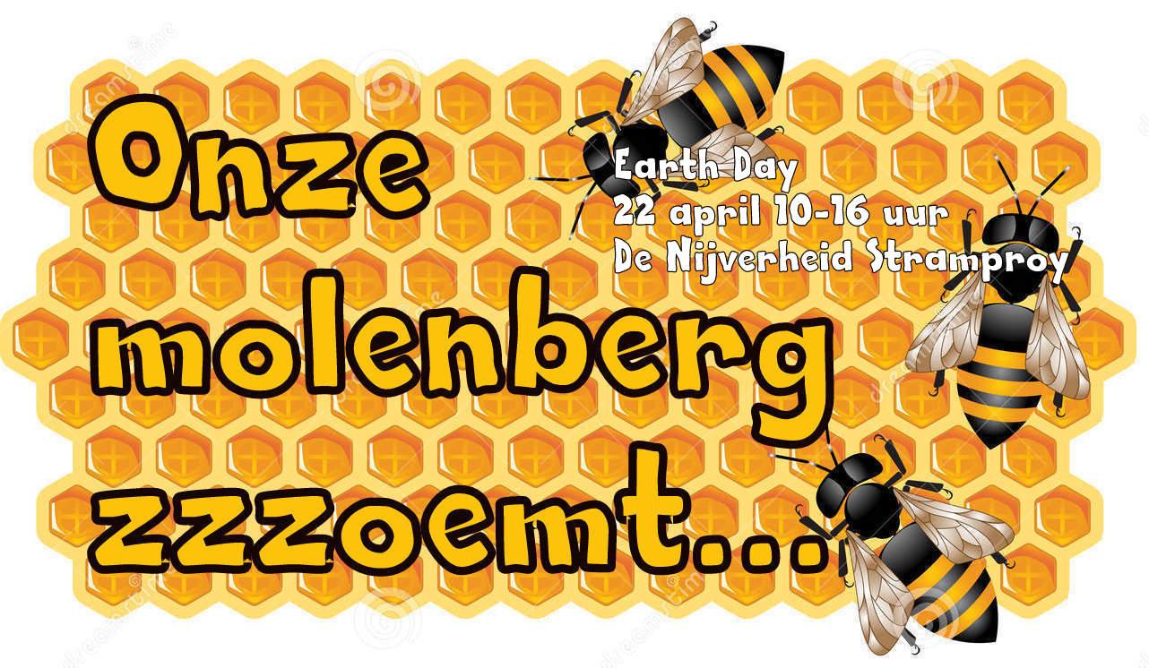 honingraat-met-bijen-10549563-003