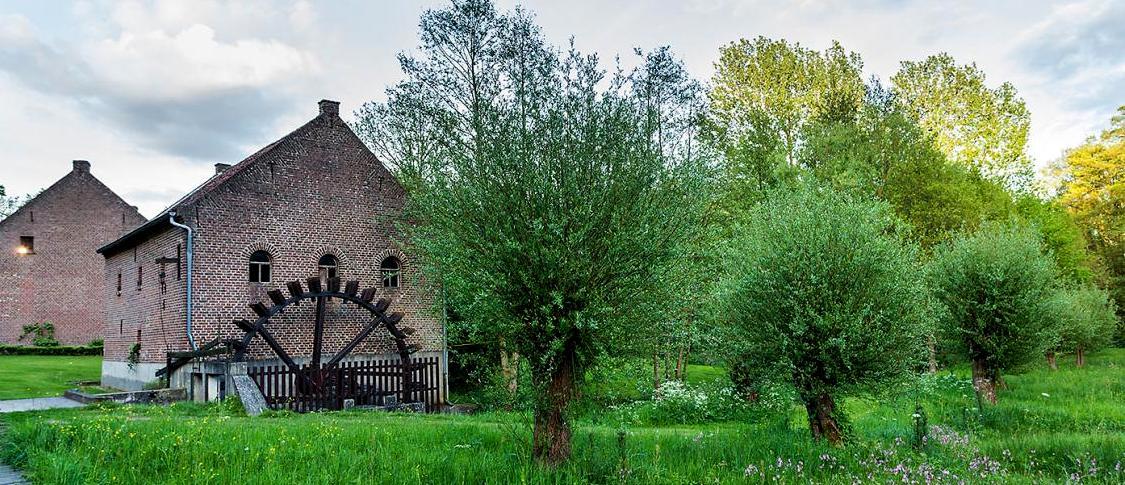 Molens als onderdeel van het landschap van Kempen~Broek