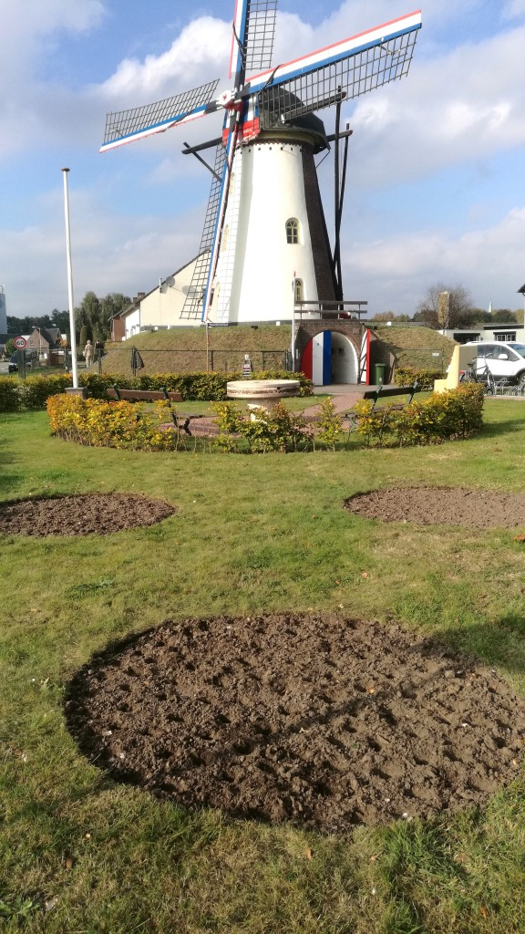 Ook op de rustplaats tegenover de molen